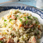 Chicken Pilau Chicken Bog Southern Chicken and Rice 3