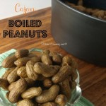 Crock Pot Cajun Boiled Peanuts are a southern favorite and there are many flavor variations. This recipe adds heat to the versatile food.