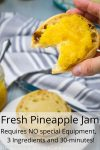 Pineapple Jam 1