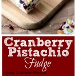 Cranberry Pistachio Fudge 4