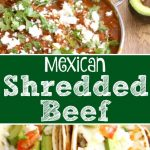Mexican Shredded Beef 5