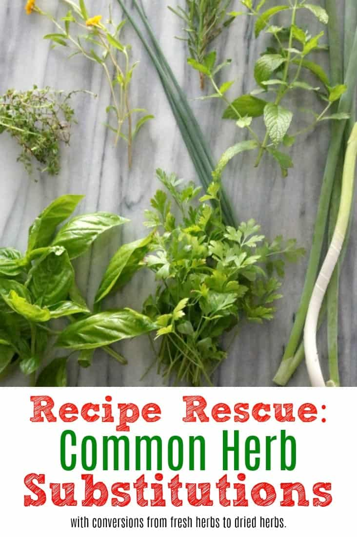 Recipe Rescue: Common Herb Substitutes with conversions from fresh herbs to dried herbs.