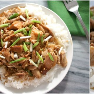 Slow cooker bourbon chicken SM Cover