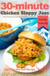Chicken sloppy Joes 2